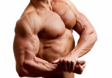 Chest workout tips