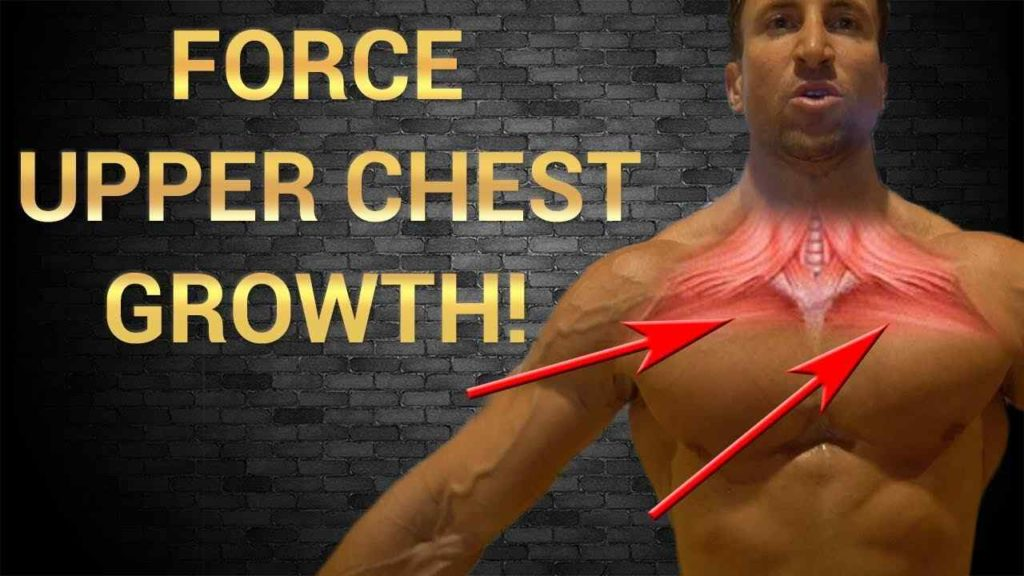 Upper Chest workout benefits