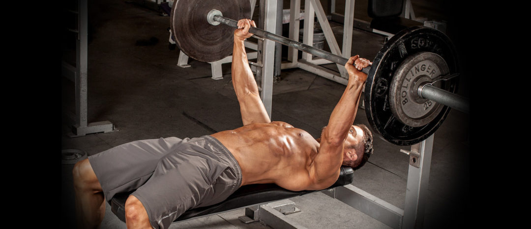 bench press workout