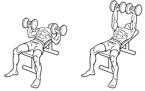 Flat dumbbell bench press workout tips