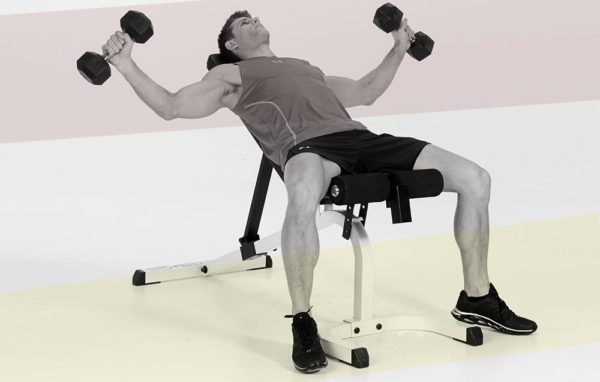 How to do Batwing Fly Dumbbell Chest Workout