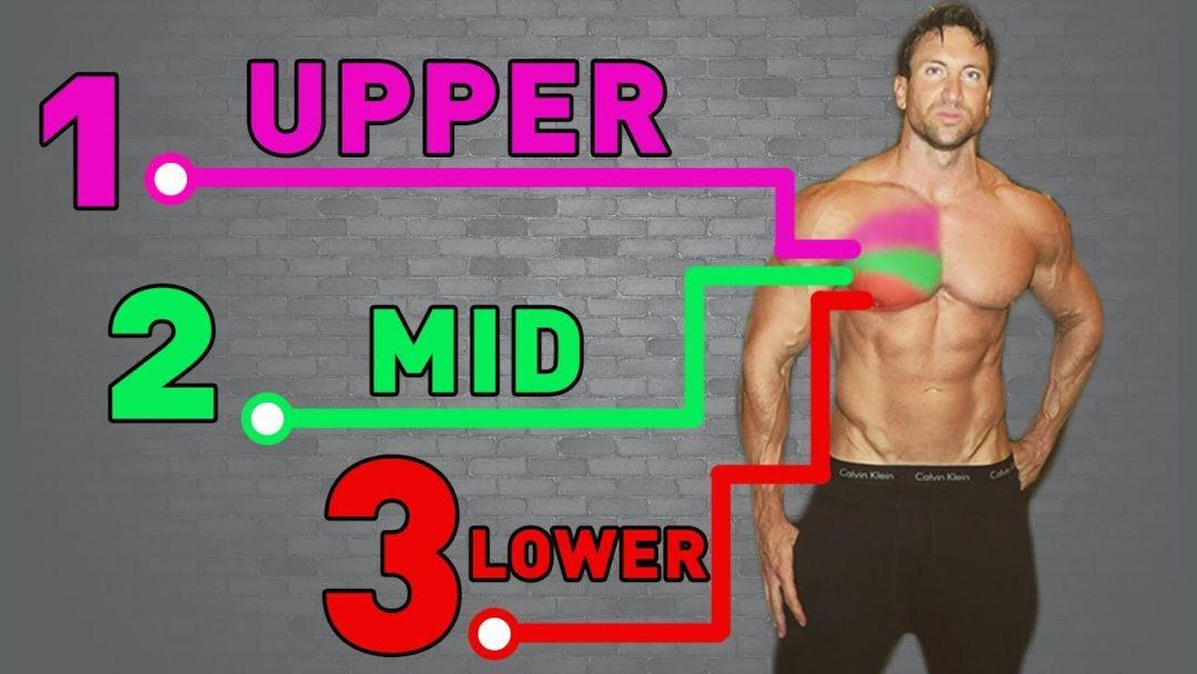 Lower chest workout