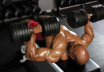 dumbbells chest workout