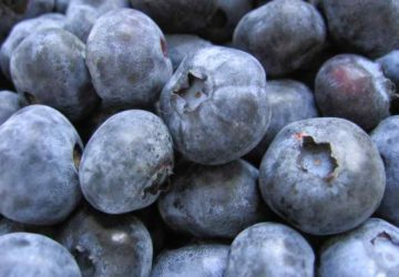 Are Blueberries acidic