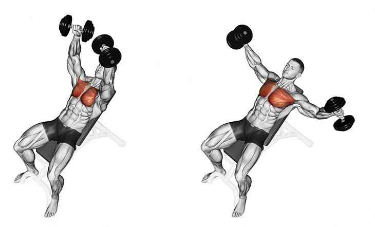 Flat Dumbbell Flies Chest Workout at home