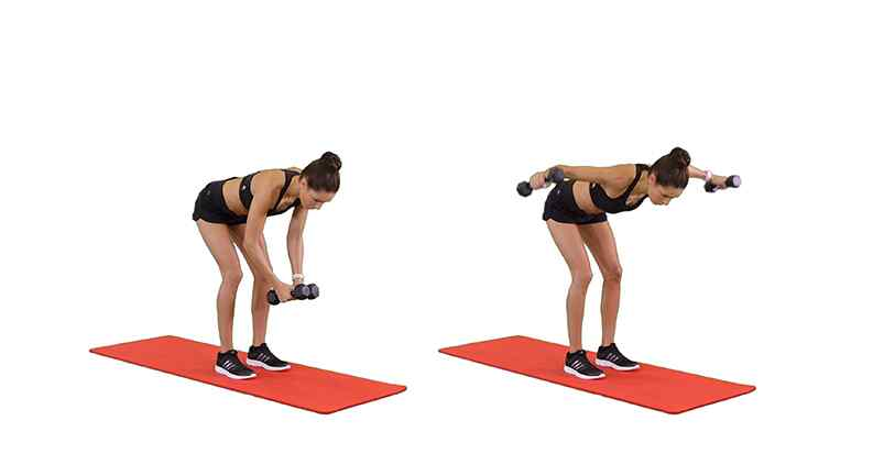 The REVERSE FLY Exercise