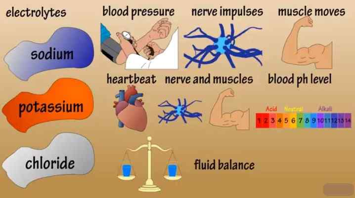 Keep a check on the electrolyte balance of the body