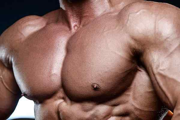 Chest Workouts For Building Awesome Pecs